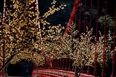 巴陵大橋(舊虹橋)風景很不錯:很有味道的設計!雖然有點俗!