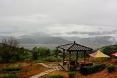 2017-11-13玉蘭茶園.: