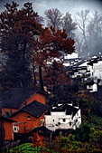 Xuite活動投稿相簿:2010-11-28_3149.jpg