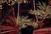 巴陵大橋(舊虹橋)風景很不錯: