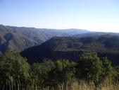 陳良弼2009美國加州優勝美地國家公園之行_0724_26 Part 2, 看到黑熊:1825170713.jpg
