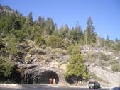 陳良弼2009美國加州優勝美地國家公園之行_0724_26 Part 2, 看到黑熊:1825170716.jpg