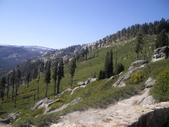 陳良弼2009美國加州優勝美地國家公園之行_0724_26 Part 2, 看到黑熊:1825170720.jpg