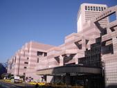 陳良弼台北國際會議中心IEEE/ACM ASP-DAC  2010 國際會議發表論文會場篇_0119:1036966356.jpg