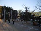 2009陳良弼韓國釜山行_龍頭山公園、南浦洞、Bexco會場報到、西面_1122:1573281778.jpg