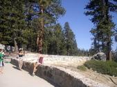 陳良弼2009美國加州優勝美地國家公園之行_0724_26 Part 2, 看到黑熊:1825170723.jpg