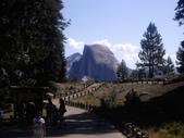 陳良弼2009美國加州優勝美地國家公園之行_0724_26 Part 2, 看到黑熊:1825170724.jpg