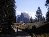 陳良弼2009美國加州優勝美地國家公園之行_0724_26 Part 2, 看到黑熊:1825170725.jpg
