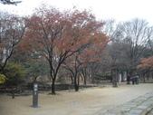 2009陳良弼韓國_首爾篇:宗廟、東大門、明洞_1124_1125:1591917208.jpg
