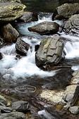 20140322烏來內洞國家森林遊樂區:DSC_4007a.jpg