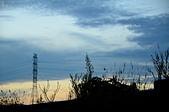 夜色:DSC_3763.JPG