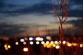 夜色:DSC_3824.JPG