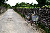 2014.06.04-07石垣島四天三夜自由行-DAY 3:DSC_8432.jpg