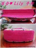 拼布手作包:甜心公主側背包 2