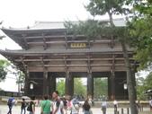 5_第五天2014-06-21(奈良東大寺-OUTLET-關西空港-台北):IMG_6037.JPG