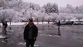 104-12-28_日本北陸5日遊(手機_Lisa):DSC_6868.JPG