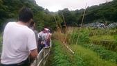 105-06-11_陽明山:DSC_7466.JPG