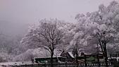 104-12-28_日本北陸5日遊(手機_Lisa):DSC_6866.JPG