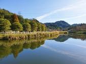 2020.01.05 大溪_慈湖公園:2020.01.05 慈湖公園  (12).jpg
