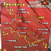 2019.12.28 梅花撲鼻香:2019.12.28 翠墨莊園  (8).jpg