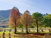 2020.01.05 大溪_慈湖公園:2020.01.05 慈湖公園  (2).jpg