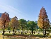 2020.01.05 大溪_慈湖公園:2020.01.05 慈湖公園  (3).jpg
