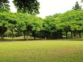 2018.04.11 大溪埔頂公園:2018.04.11 大溪埔頂公園 (1).jpg
