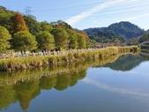2020.01.05 大溪_慈湖公園:2020.01.05 慈湖公園  (14).jpg