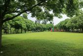 2017.05.03 城市裡的綠風景:2017.05.03 城市裡的綠風景 (6).jpg