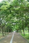 2017.05.03 城市裡的綠風景:2017.05.03 城市裡的綠風景 (5).jpg