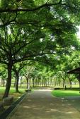 2017.05.03 城市裡的綠風景:2017.05.03 城市裡的綠風景 (14).jpg