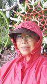 2020.09.26 高雙陂塘漣漪迷宮:2020.09.26 雙連坡_地景藝術展  (6).jpg