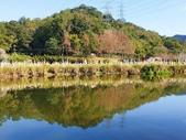 2020.01.05 大溪_慈湖公園:2020.01.05 慈湖公園  (20).jpg