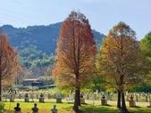 2020.01.05 大溪_慈湖公園:2020.01.05 慈湖公園  (1).jpg