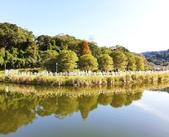 2020.01.05 大溪_慈湖公園:2020.01.05 慈湖公園  (7).jpg