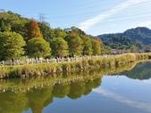 2020.01.05 大溪_慈湖公園:2020.01.05 慈湖公園  (10).jpg