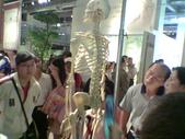 人體骨頭展_2004拍照:人體骨頭展_2004拍照  (5).jpg
