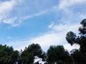 2020.07.05 艷陽天避暑趣:2020.07.05 艷陽天避暑趣  (3).jpg