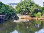 2020桃園地景藝術節:2020.09.13 中央大學  (11).jpg