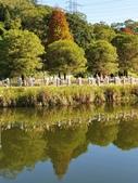 2020.01.05 大溪_慈湖公園:2020.01.05 慈湖公園  (11).jpg