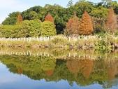 2020.01.05 大溪_慈湖公園:2020.01.05 慈湖公園  (21).jpg