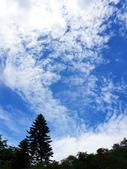 2020.05.30 桃園陽明運動公園:2020.05.30 陽明公園  (17).jpg