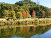 2020.01.05 大溪_慈湖公園:2020.01.05 慈湖公園  (16).jpg