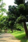2017.05.03 城市裡的綠風景:2017.05.03 城市裡的綠風景 (17).jpg