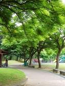 2018.04.11 大溪埔頂公園:2018.04.11 大溪埔頂公園 (3).jpg