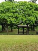 2018.04.11 大溪埔頂公園:2018.04.11 大溪埔頂公園 (2).jpg