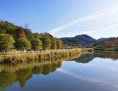 2020.01.05 大溪_慈湖公園:2020.01.05 慈湖公園  (8).jpg