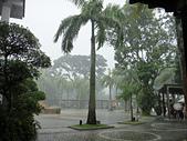 2012-03-25_牛車水、聖陶沙:突然間的傾盆大雨!