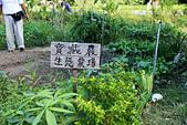 2012-07-21_寶藏巖與景美河堤:寶藏巖生態農場