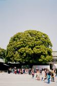 [Film 33] 三月關東_Day2/3東京&奧日光 (By 月光機):明治神宮的夫妻樹